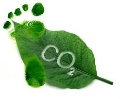 Compact Dark CO2